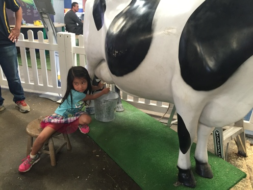 "Milking a ""cow"" at the State Fair"