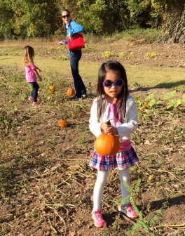 School field trip to the pumpkin patch