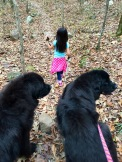 My three black haired beauties